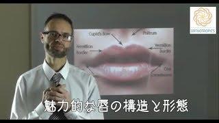 魅力的な唇の構造と形態