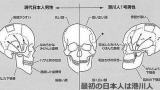 日本人の顔のルーツを探る